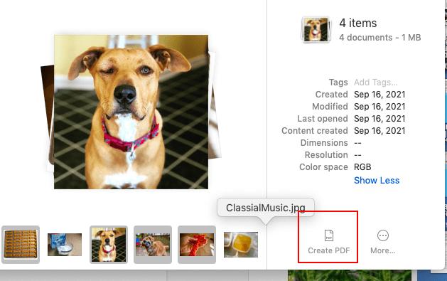 """Create PDF"" icon"